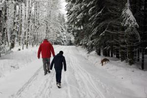 Spaziergang im verschneiten Wald