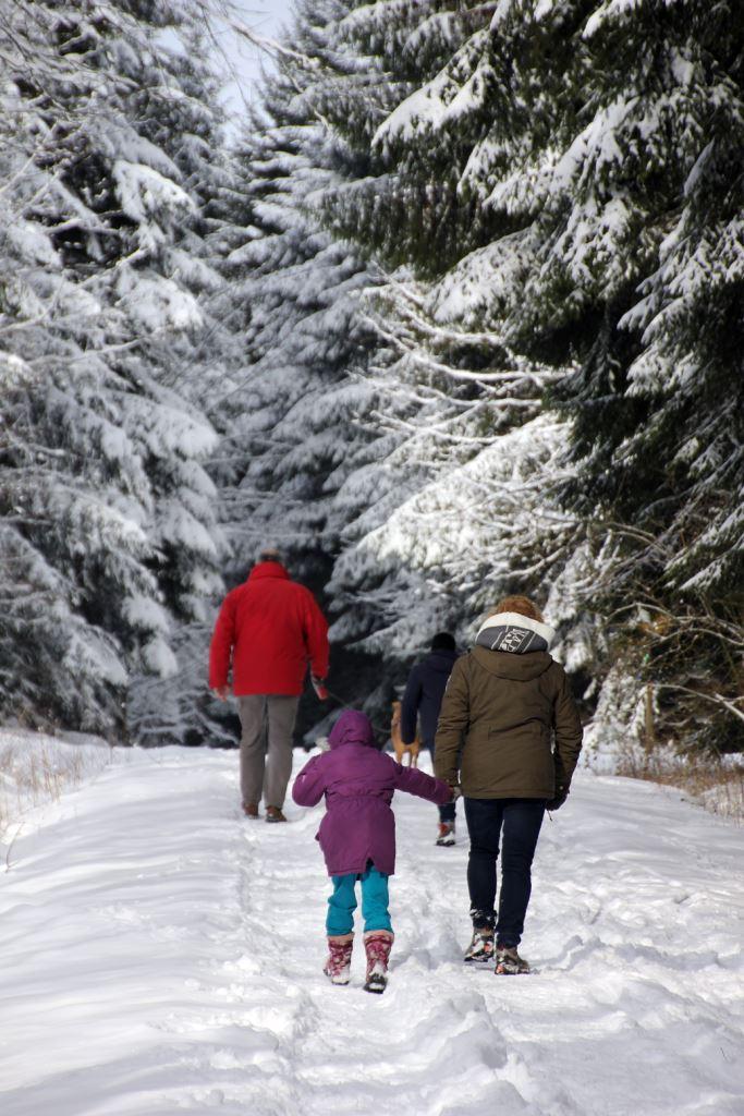 Winterfreuden im Wald